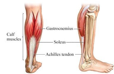 Lower Leg Pain After Running [Guide of Causes and Treatments] 1